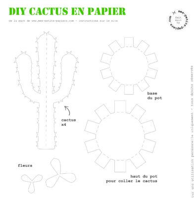 DIY_Atelier-cactus-mes-petits-papiers.com