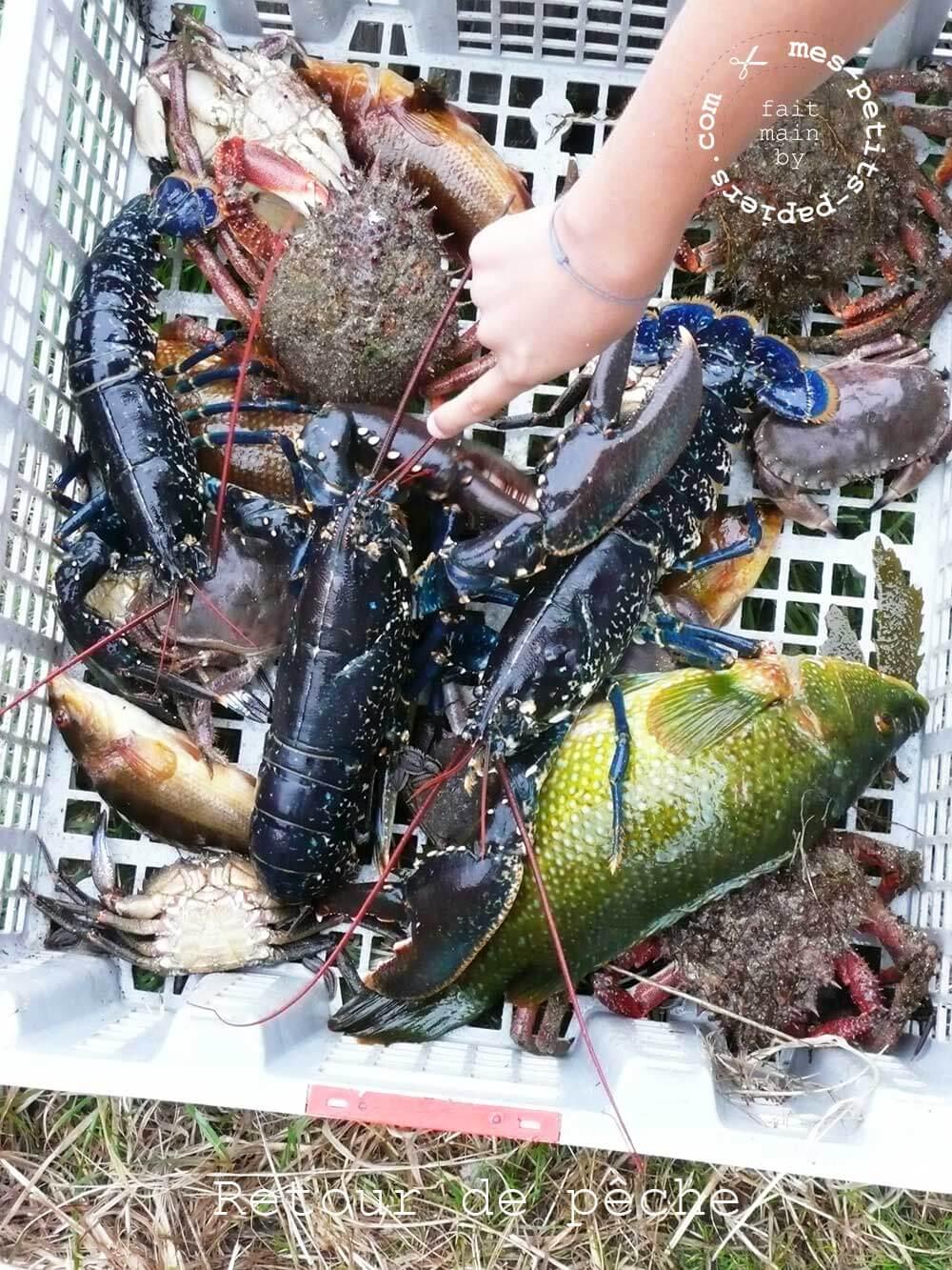 Oscar le homard en papier mes-petits-papiers.com 1